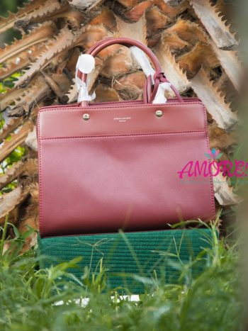 Dark bordeaux David Jones bag