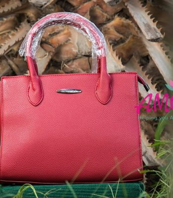 Vernika red box bag